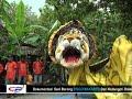 Ngeri    Lihat Singo Barong Makan Sang Pengantin Sampai Menangis