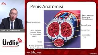Sertleşme sorunu/Prostat irileşmesi Soru-Cevap