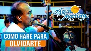 Agua Marina - Como haré para Olvidarte (En Vivo)