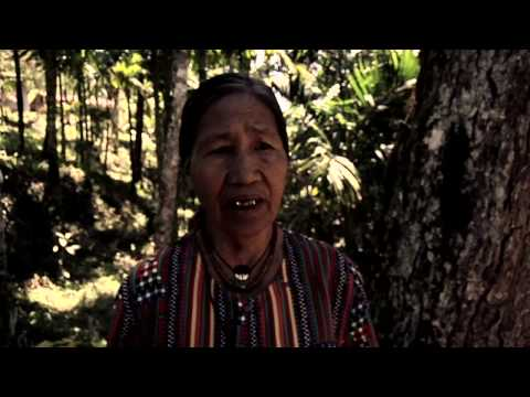 Collection - Tribal sounds of the Philippines