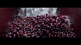 Nespresso - Hero Video | BR