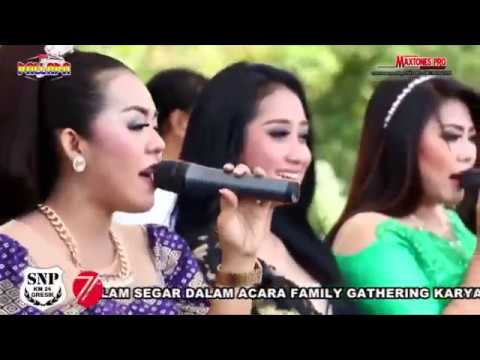 Video ALL ARTIS OM  NEW PALLAPA SNP SAUDARA NEW PALLAP0 LIVE IN GRESIK 2016 download in MP3, 3GP, MP4, WEBM, AVI, FLV January 2017