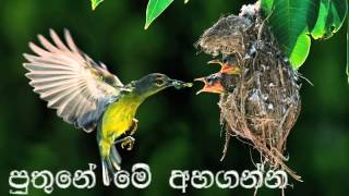 Video ~Puthune Me Ahaganna~SUJATHA ATTANAYAKE~By:Sujeewa Munugoda~ MP3, 3GP, MP4, WEBM, AVI, FLV Agustus 2018