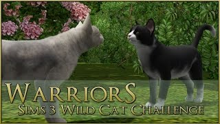 Nonton A Meeting Of Crows And Ravens      Warrior Cats Sims 3 Legacy   Episode  91 Film Subtitle Indonesia Streaming Movie Download