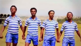 Best Ethiopian Traditional Music 2014  Danny Dance - Wa Stel