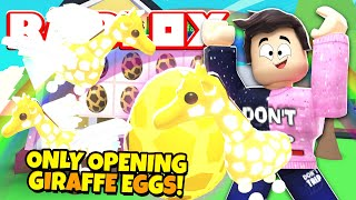 I ONLY Opened RARE GIRAFFE EGGS in Adopt Me! NEW Adopt Me Pet Accessory Update (Roblox)