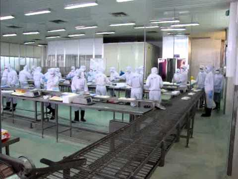 a step in processing breaded shrimp in Camimex's factories.MPG