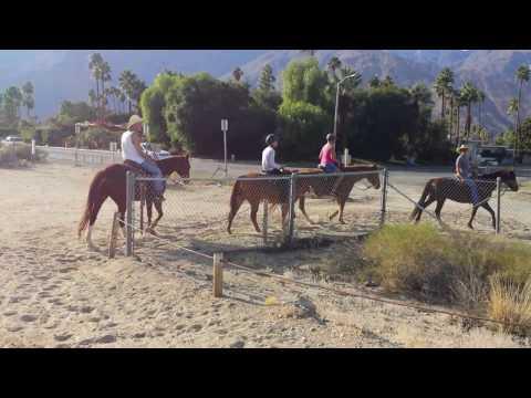 Horseback riding in Palm Springs Nov. 24th 2016