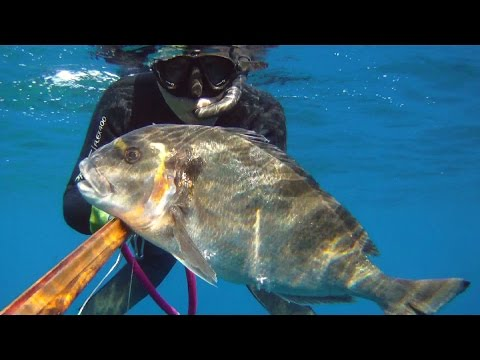 pesca sub: oratona da record!