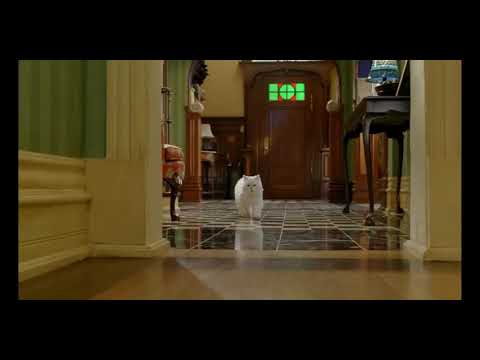 Stuart little | new | hindi