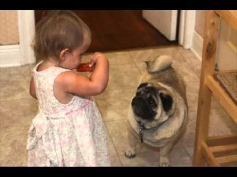 和狗狗一起快樂長大的寶寶,狗狗是人類最忠實的朋友!