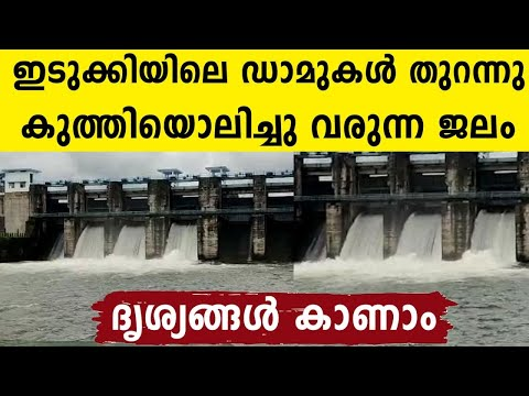 പ്രളയ സാധ്യത..ഇടുക്കിയിലെ ഡാമുകൾ തുറന്നു | Oneindia Malayalam
