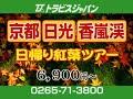 ツアーバスならトラビスジャパン 特選!!旅情報(2008年10月前半CM)
