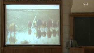 17. Malaria (II): The Global Challenge