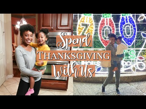 Spend Thanksgiving With Us! (First Holiday Co-Parenting) | Mom Vlog