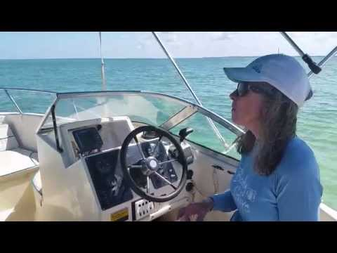 Anclote Key, South End Sand Bar, Central West Coat of Florida (видео)