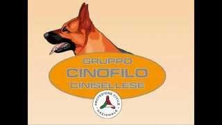 Presentazione del Gruppo Cinofilo Cinisellese Protezione Civile