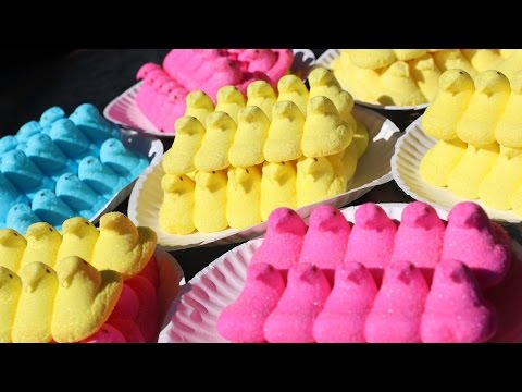 Matt Stonie Sets World Record for Eating 255 Marshmallow Peeps in 5