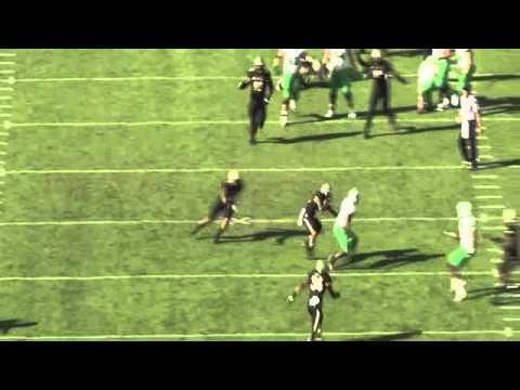 Ricardo Allen 2013 Highlights video.