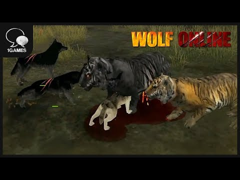 Hey Wolf Warriors! Hunting the Black Tiger_Wolf Online New Updated