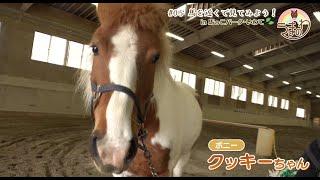 #05 馬を近くで見てみよう!in 馬っこパーク・いわて