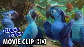 Rio 2 Movie CLIP - Beautiful Creatures (2014) HD