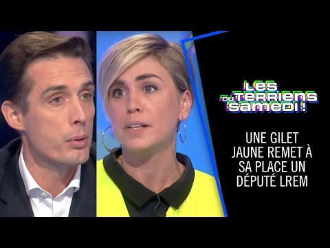 Une gilet jaune remet en place un député LREM - Les Terriens du Dimanche