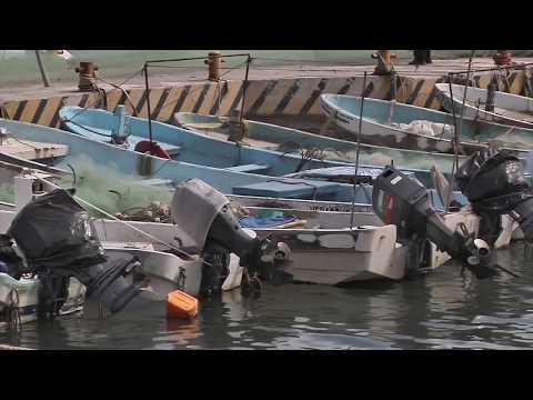 Hasta en un 50% disminuye captura de pescados y mariscos