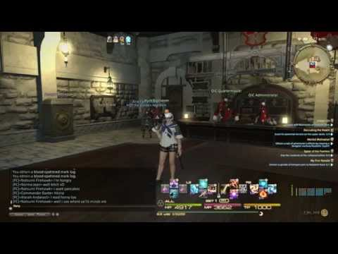 FINAL FANTASY XIV  Elite marks hunting ^^