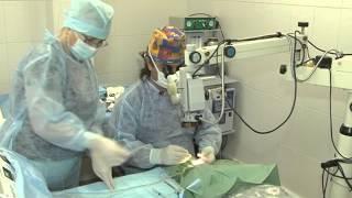 Фото и видео — Лазерное лечение катаракты — фото