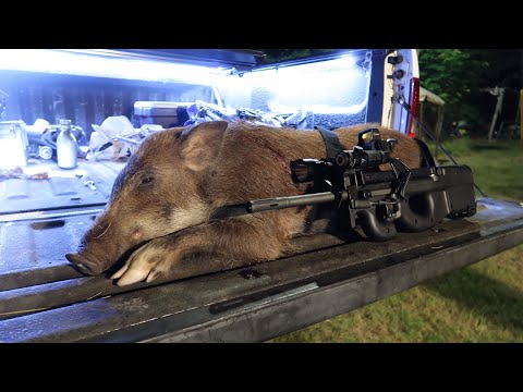 FN PS90 Hog Boar Hunt