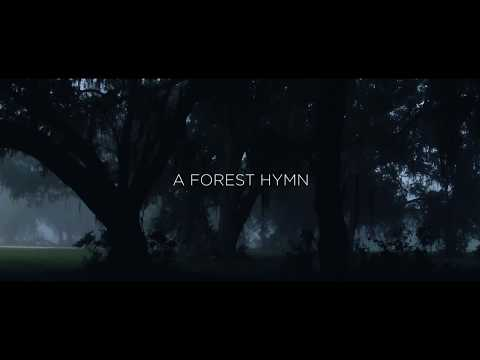 A Forest Hymn