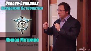 Обучение Остеопатии. Живая Матрица — Новосельцев С.В. — видео