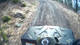 9. Polaris Sportsman 800 ride in the wood