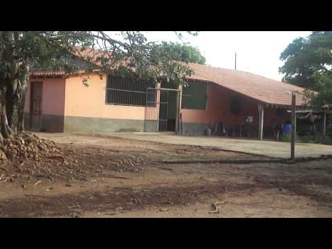 Imagens da Casa e do quital da casa da mamae em Sebastiao Barros PI