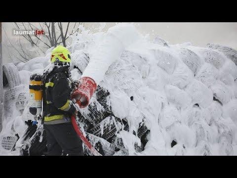 Elf Feuerwehren bei Brand in Enns im Einsatz