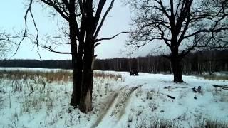 10. arctic cat 550(1)