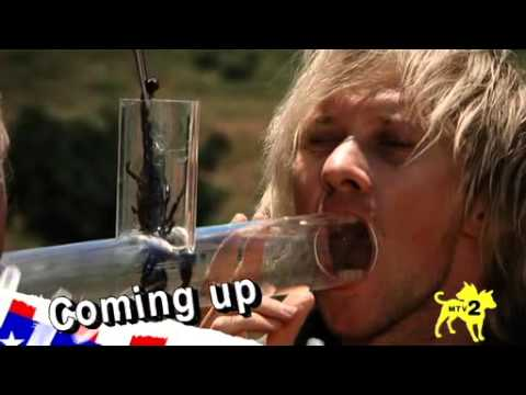 The Dudesons in America S01E12 WS DSR XviD YESTV