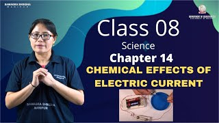 Class VIII Science Chapter 14: Chemical Effects of Electric Current