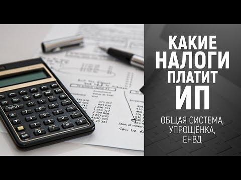 [Налоги ИП] Какие налоги платит Индивидуальный Предприниматель - DomaVideo.Ru