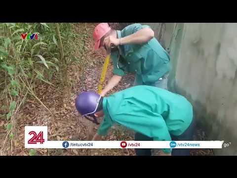 Vụ 300 thai nhi trong bãi rác ở Cà Mau: Đoàn Kiểm tra phát hiện 9 hũ sành @ vcloz.com