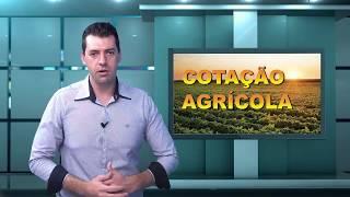Capa do vídeo Juliano Alarcon fala da aplicação do conhecimento no aumento da produção leiteira
