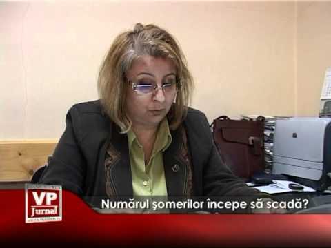 Numărul şomerilor începe să scadă?
