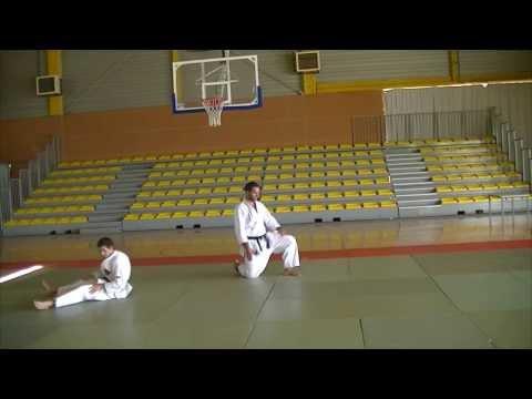 Nihon Tai Jitsu Tai Sabaki No Kata
