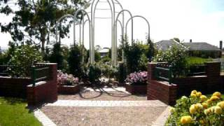 Morwell Australia  City new picture : Morwell Rose garden,vic,Australia