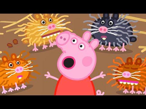 Peppa Pig en Español Episodios completos Temporada 8 - Nuevo Compilacion 14