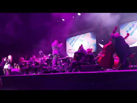 1999 - Prince Tribute By Dallas Symphony Orchestra