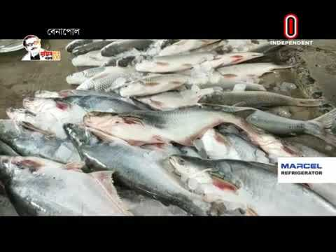Export of freshwater fish (25-09-20) Courtesy: Independent TV