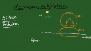 Mecanismos de Antibióticos e Resistência Bacteriana - Resumo...