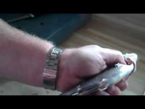 Comment dépecer une truite rapidement